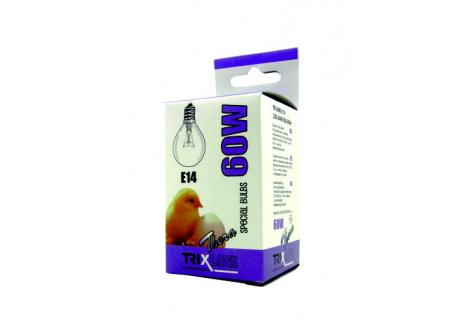Špeciálna žiarovka BC G45W E14 teplá biela